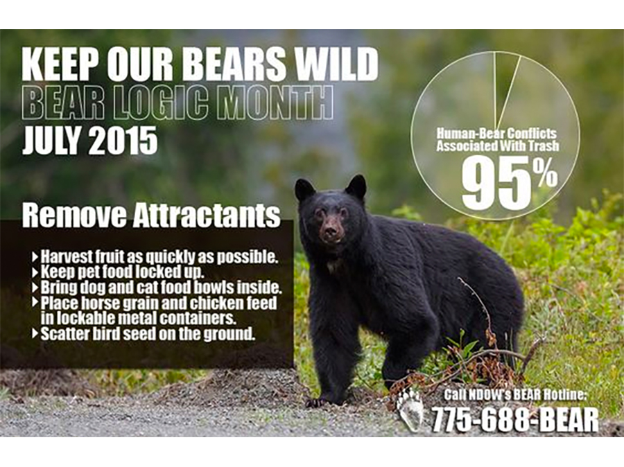 Keep Our Bears Wild - July is Bear Month