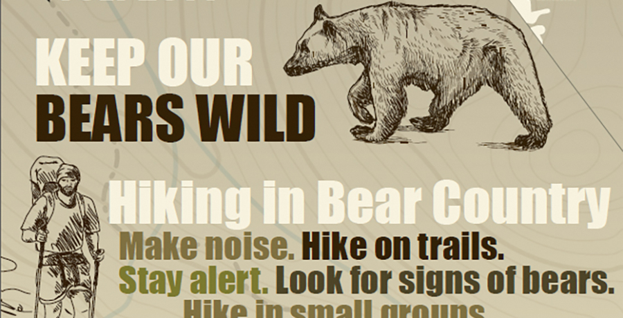 Public Outreach Campaign: Hiking in Bear Country