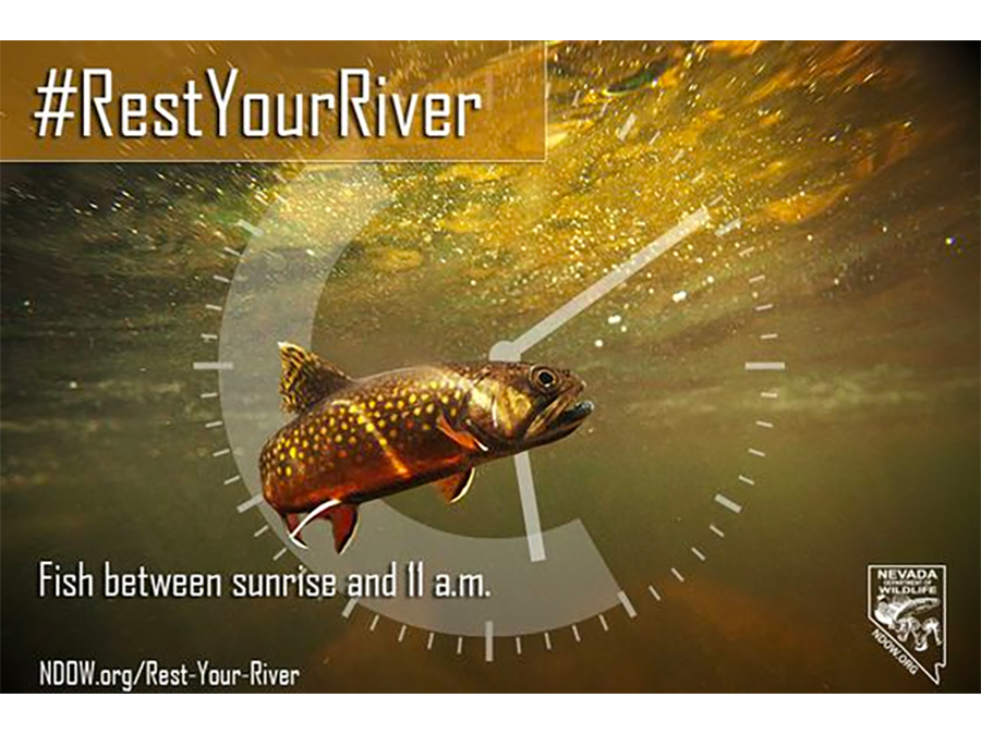 Rest Your River #RestYourRiver